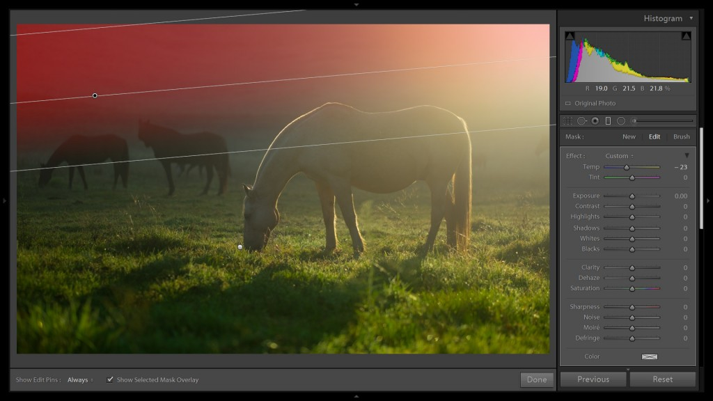 HorseEdit2